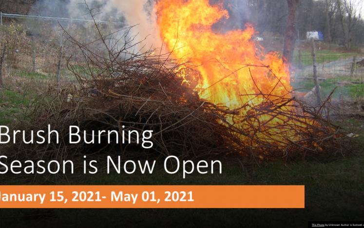 Brush Burning 2021